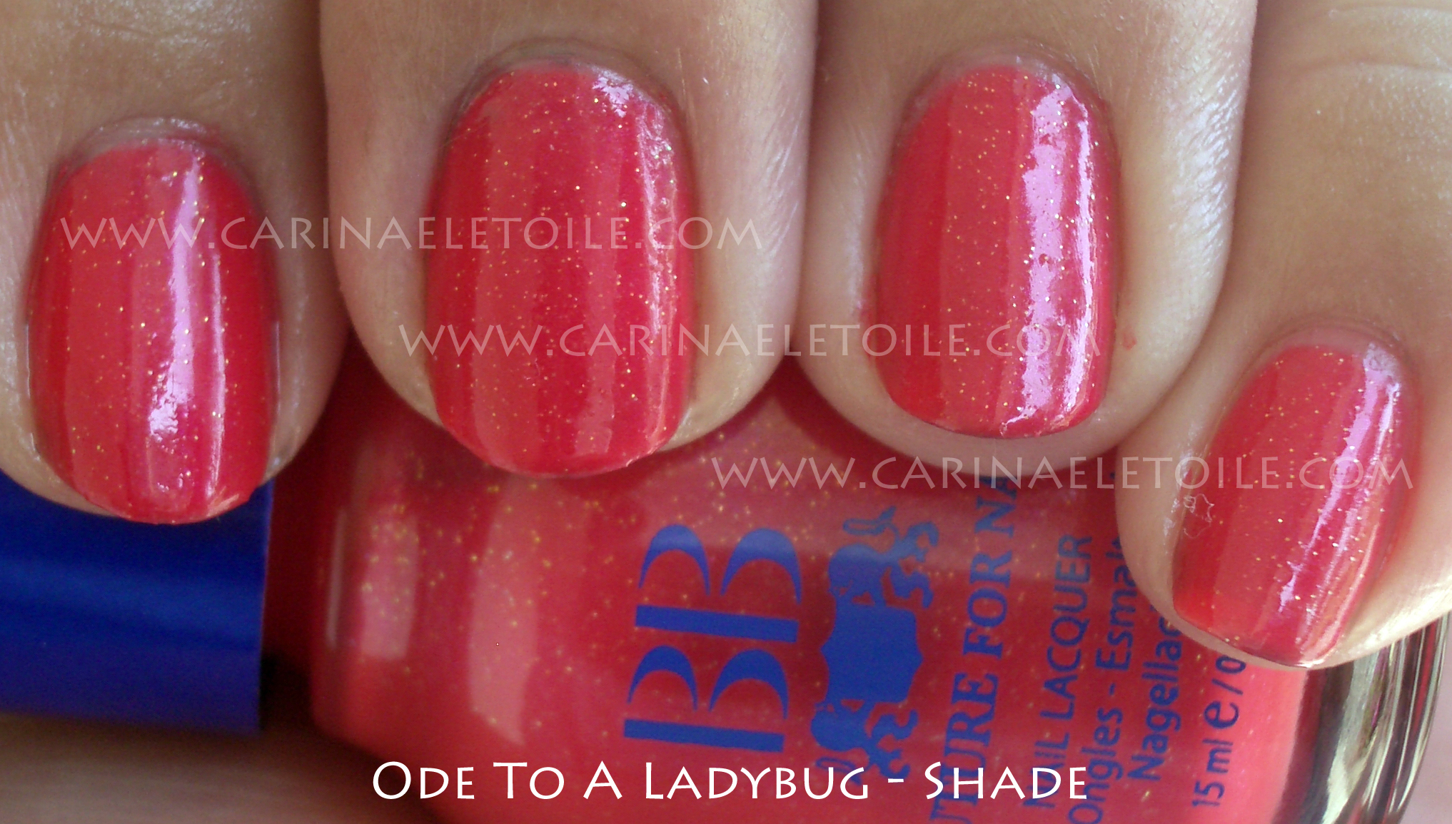 BB Couture Ode To A Ladybug