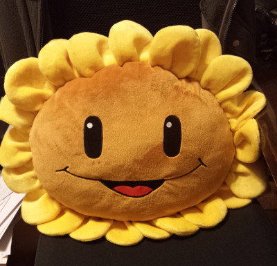 Sunflower Take Over