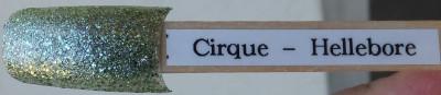 Cirque Hellebore