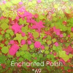 Enchanted Polish *69