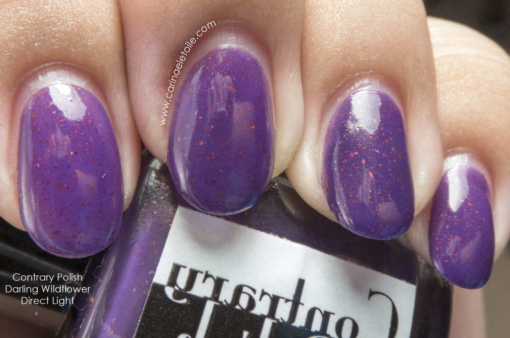 Contrary Polish Darling Wildflower Direct Light