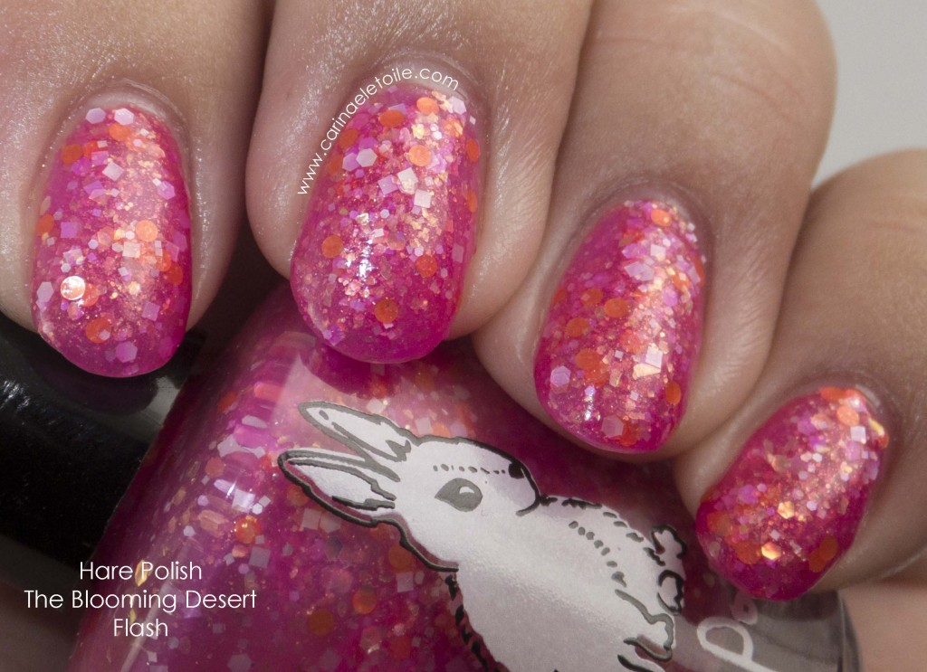 Hare Polish The Blooming Desert Flash