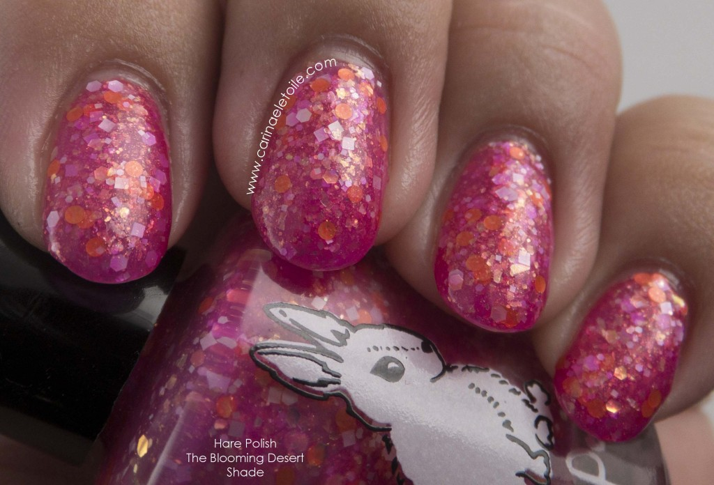 Hare Polish The Blooming Desert Shade