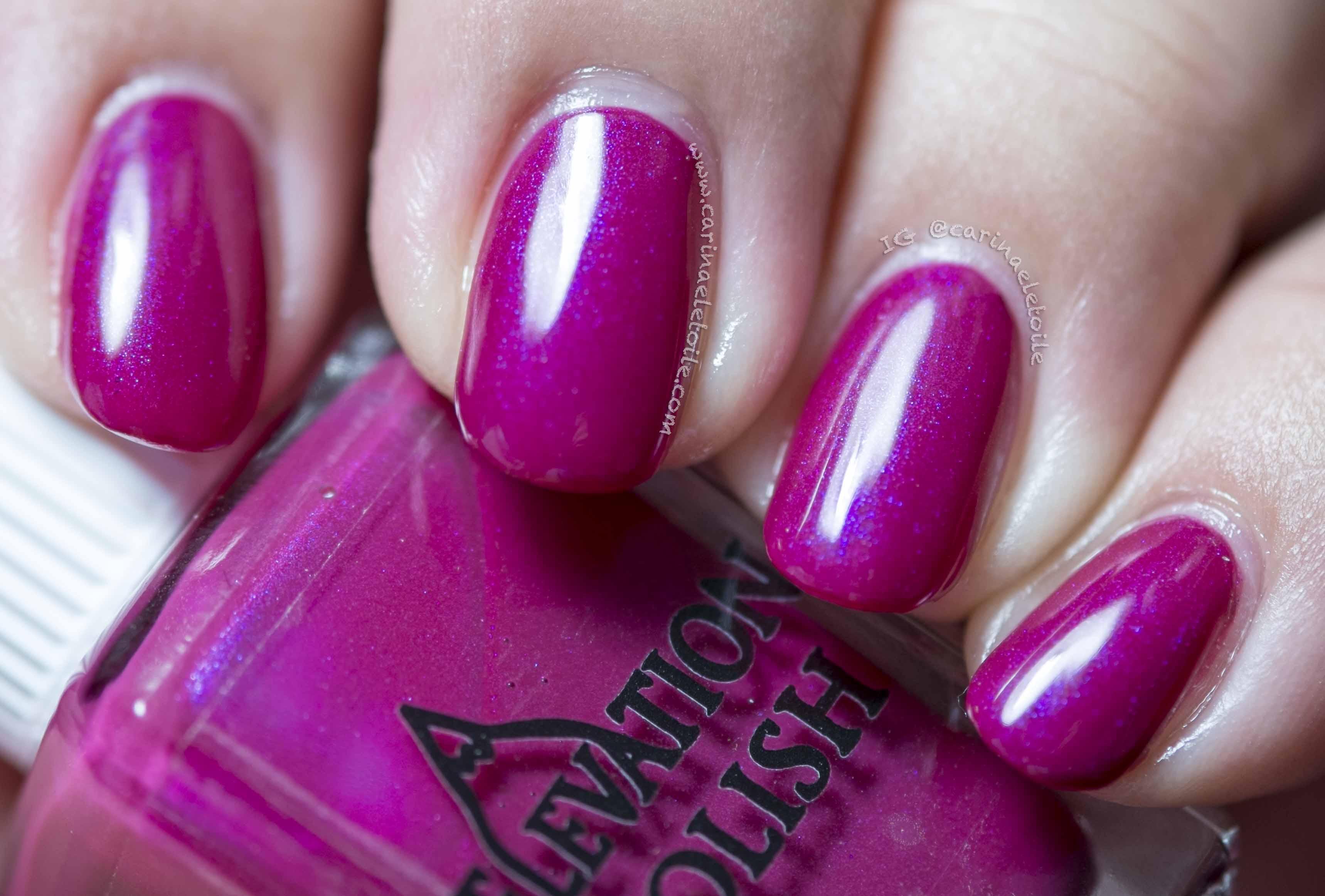 Elevation Polish Purple Blotch Basslet